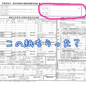 保険・配偶者特別控除申告書